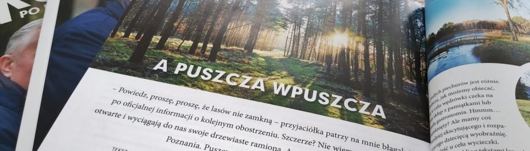 Puszcza wpuszcza w Sukces po Poznańsku
