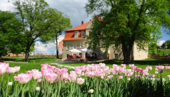 Olandia