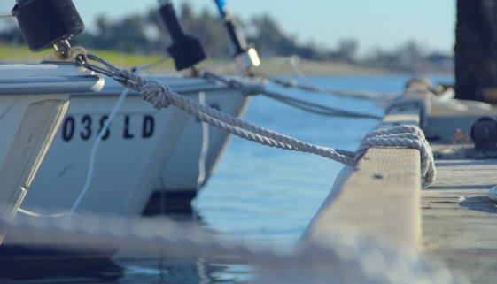 wpw łódź marina